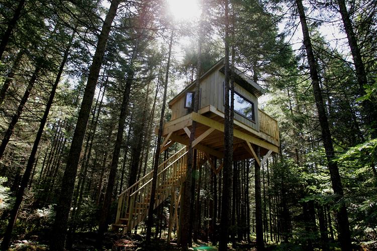 dormir dans une cabane dans la for t kabania offre un camping r invent cotouristique au. Black Bedroom Furniture Sets. Home Design Ideas