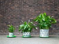 Un ingénieux pot qui se déploie pour suivre le développement d'une plante
