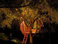 20 jolies inspirations qui donnent envie de vivre dans une cabane dans un arbre