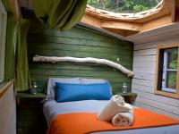 Des mignonnes cabanes cachées en forêt avec dôme en verre où séjourner à Sacré-Cœur